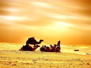 Desert sun....hot summer days force families indoors between May - September in Arabia